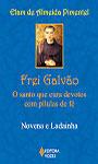 Frei Galvão: o santo que cura devotos com pílulas de fé